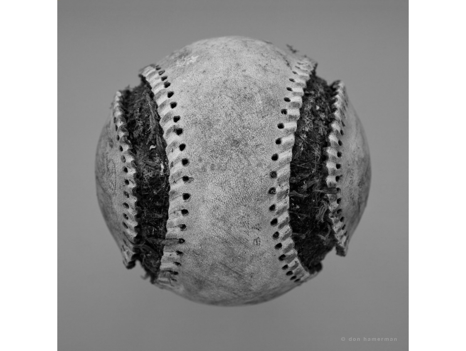 Don Hamerman Baseball Portrait - Fine Art Print